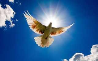 Молитва за мир во всем мире православная