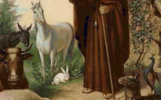 Молитва покровителей животных