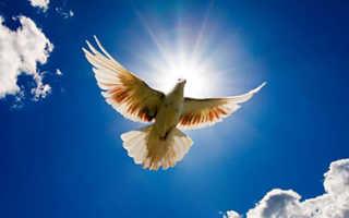 Молитва от приворота или заговор